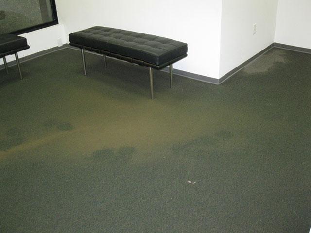 VPAG-Flood,-Dec-5,-2013-(60)-sm